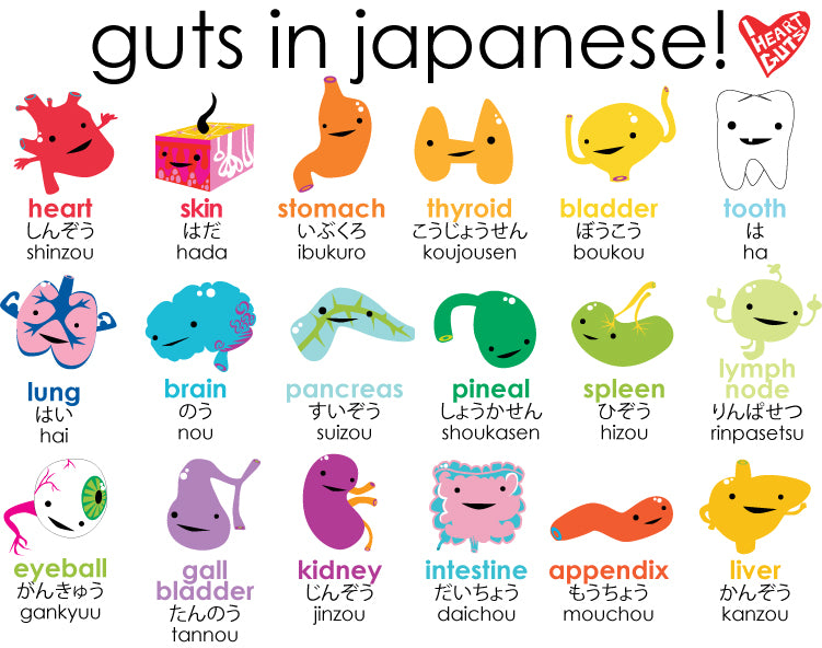 Guts In Japanese