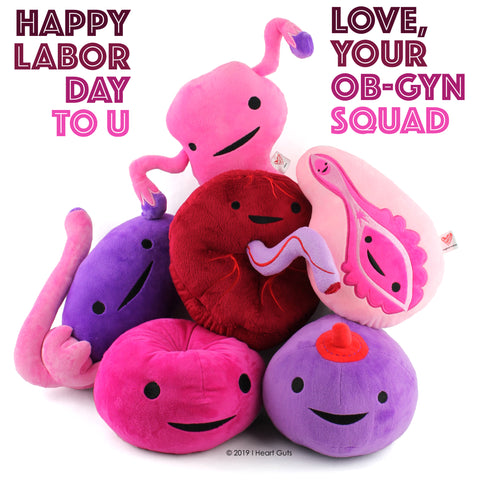 Uterus Gyno Plush Educational Women's Health Toys