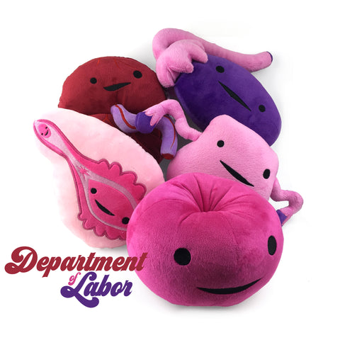 Reproductive System Plush Toys - Female Toy Figures - Sex Ed Models