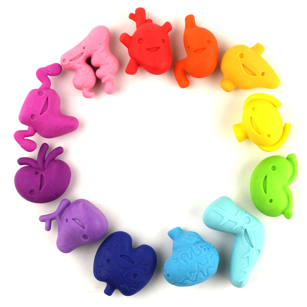 Happy Organ Eraser Set Variety Pack