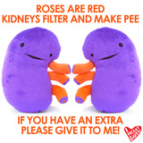 Kidney Plush - When Urine Love! SOLD OUT! BACK AUG. 2017