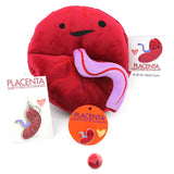 Placenta Keychain - Baby's First Roommate