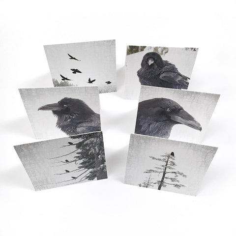 Set of Six Holiday Greeting Cards
