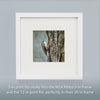 BROWN CREEPER - Fine Art Print, Garden Birds Series
