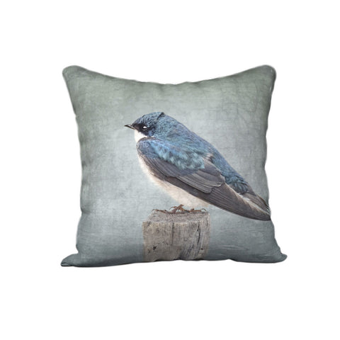 Tree Swallow Stands — Bird Cushion Cover — NEW SALE PRICE