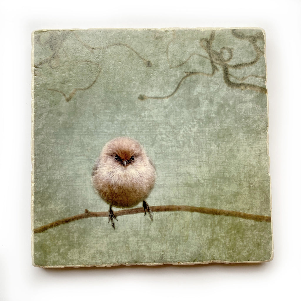 AGNES THE FURIOUS BUSHTIT - Large Marble Tile, Coaster or Wall Art