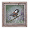 CHESTNUT BACKED CHICKADEE - Fine Art Print, Garden Birds Series