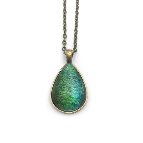 Iridescent Hummingbird Feathers Teardrop-Shaped Glass Pendant
