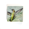 HUMMINGBIRD BATHING IN A LEAF - Small Marble Tile Coaster or Wall Art