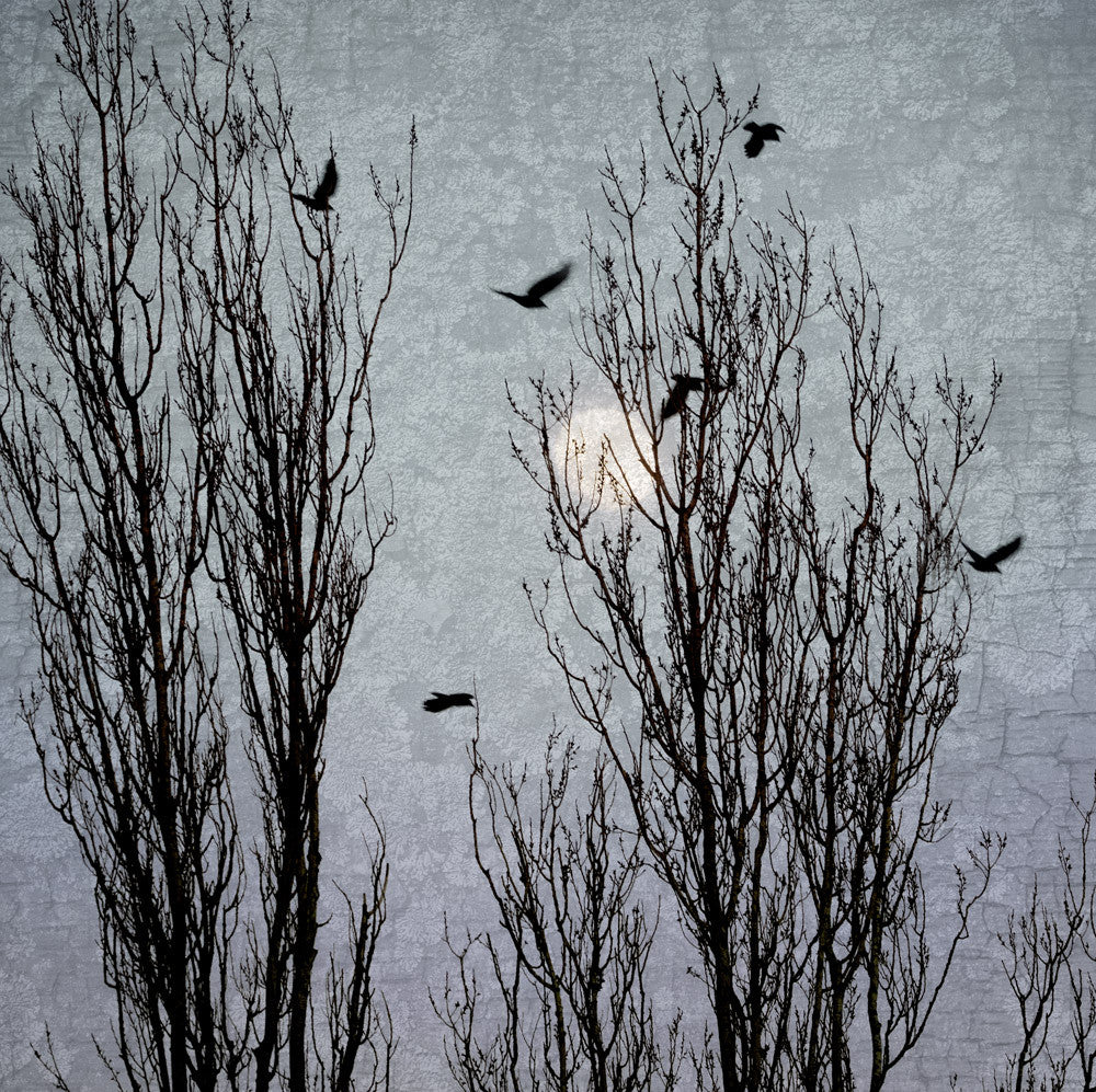 MOONLIGHT TRAVELLERS - Fine Art Print, Blue Crow Series