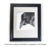 RAVEN REFLECTION - Fine Art Print, Raven Portrait Series