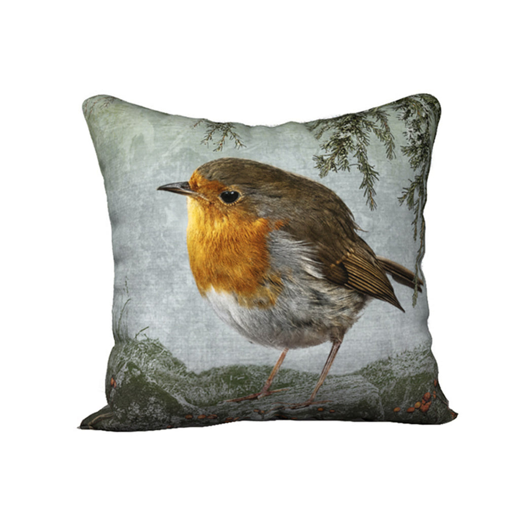 Robin Thinking of Home — Bird Cushion Cover