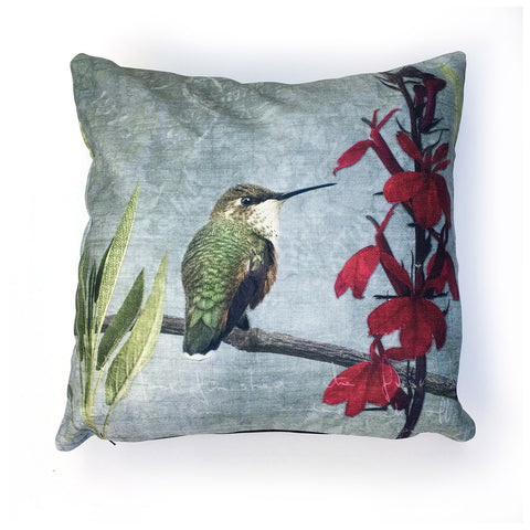 Rufous Hummingbird Canvas Cushion Cover
