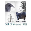 NEVERMORE - Fine Art Print, Raven Portrait Series