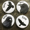 Set of Four Crows and Ravens - Magnet Set