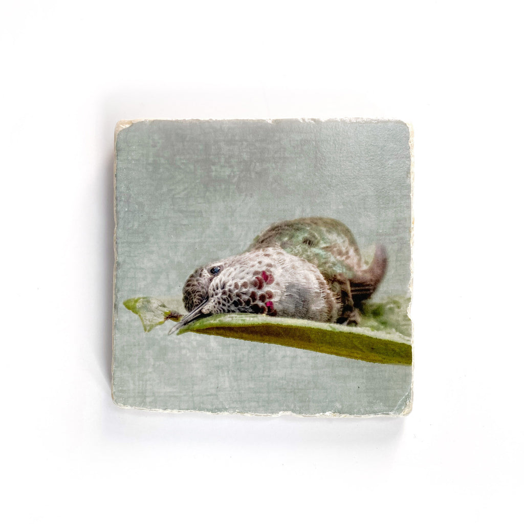 HUMMINGBIRD BATHING IN A LEAF 2 - Small Marble Tile Coaster or Wall Art