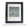 SMALL BUT DETERMINED - Fine Art Print, Garden Birds Series