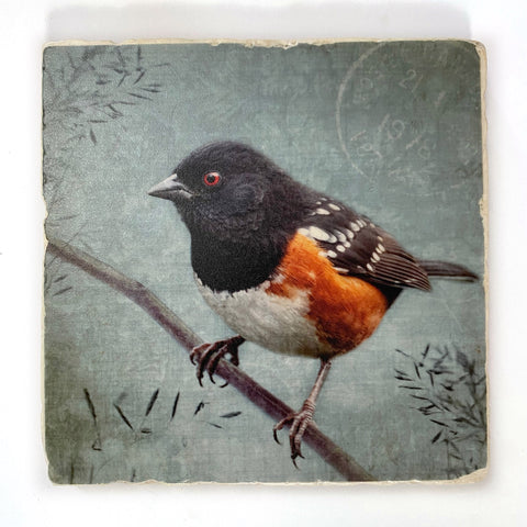 SPOTTED TOWHEE - Large Marble Tile, Coaster or Wall Art