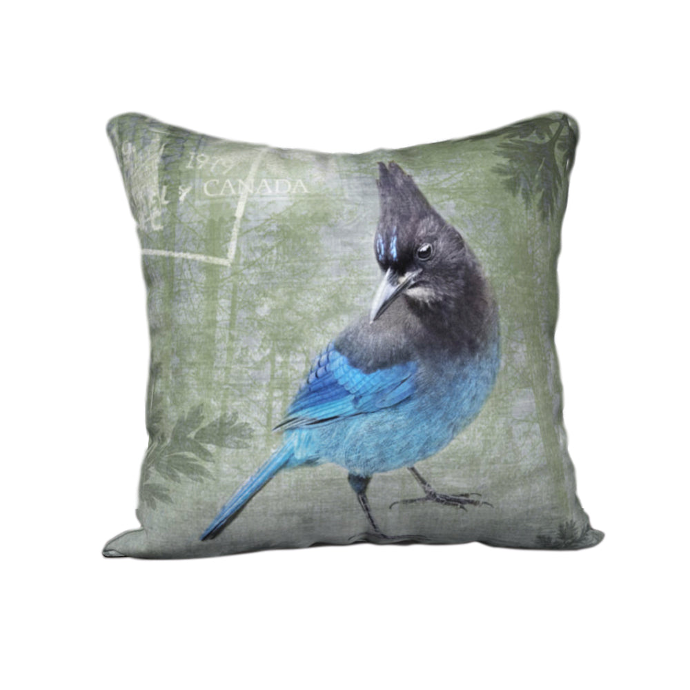 Steller's Jay — Bird Cushion Cover — NEW SALE PRICE