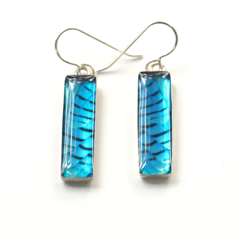 STELLER'S JAY FEATHERS - Rectangular Earrings, Silver and Resin