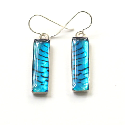 Custom Order for Suvarna STELLER'S JAY FEATHERS - Rectangular Earrings