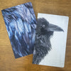 RAVEN FEATHERS - Small Notebook by June Hunter