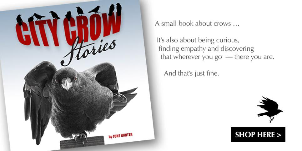 Magnet sets by June Hunter - Vancouver Birds and Crows & Ravens