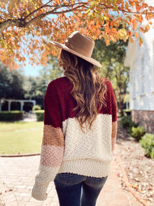Shades of Burgundy Cozy Sweater Sweaters Entrousa