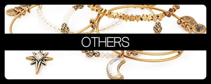 Alex & Ani Collection - Others