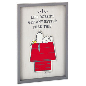 Hallmark Peanuts Snoopy Woodstock Life Doesn't Get Better Framed Wall Art New