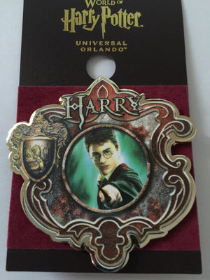 Universal Studios Wizarding World of Harry Potter Harry Pin New with Card