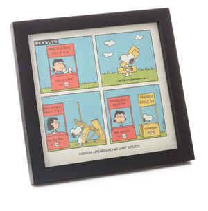 Hallmark Peanuts Lucy and Snoopy Kindness Cartoon Framed Art Quoted Sign New