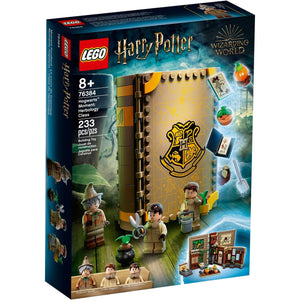 Lego 76384 Harry Potter Hogwarts Moment: Herbology Class Brick Book New Sealed