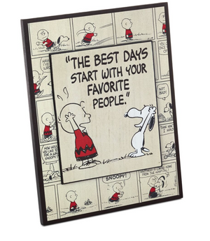 Hallmark Peanuts Charlie Brown and Snoopy Best Days Wood Quote Sign New