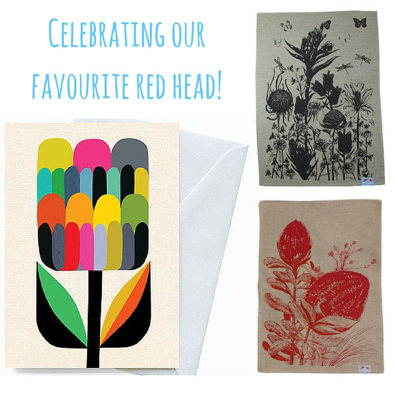 The Waratah - our favourite Aussie red head!
