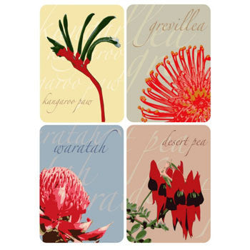 Australian native flowers magnet pack