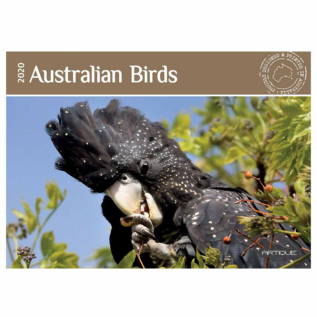 2020 Australia Bird Calendar For the Best Australian Gifts to Send Overseas