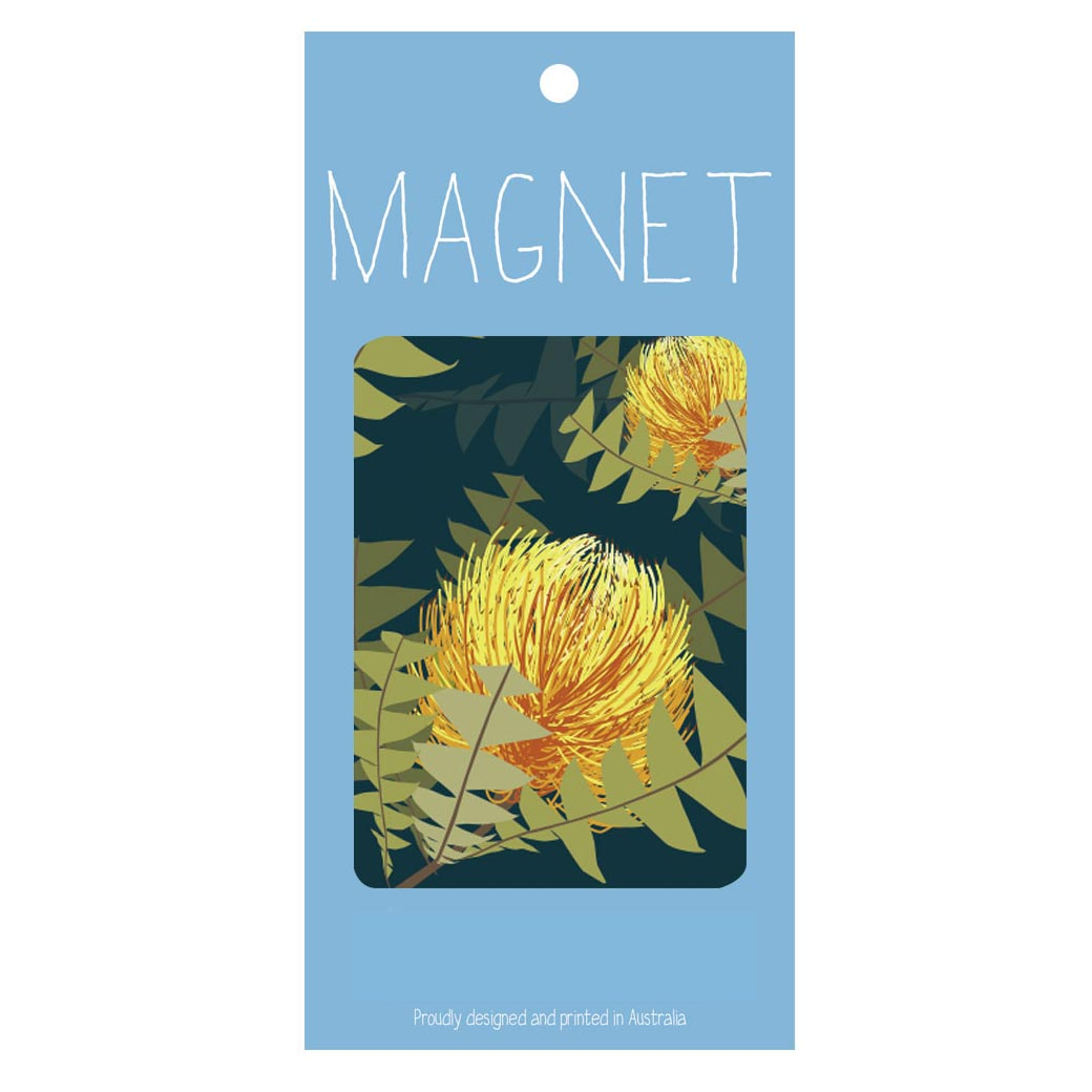 Australian souvenir magnet - native banksia one of Australia's most iconic plants!