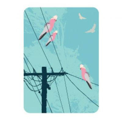 Australian Made Gifts & Souvenirs with the Galahs On The Line Magnet -by Mokoh Design. For the best Australian online shopping for a Magnets