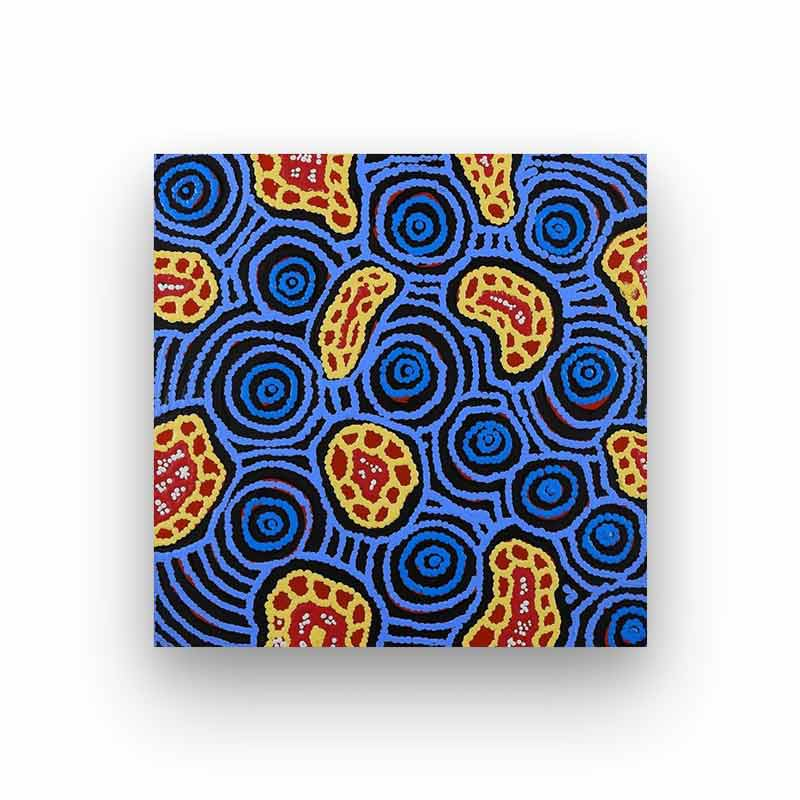Contemporary Aboriginal Art For Sale Buy Kirsty Napanangka Martin BITSOFAUSTRALIA