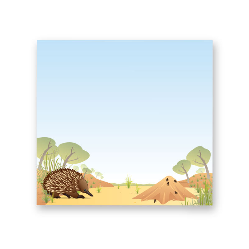 Aussie Souvenirs under $10 Echidna Sticky Notes