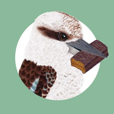 Kookaburra and Tim Tam Greeting Card