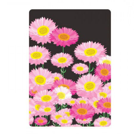 Australian Made Gifts & Souvenirs with the Midnight Everlasting Daisies Magnet -by Mokoh Design. For the best Australian online shopping for a Magnets