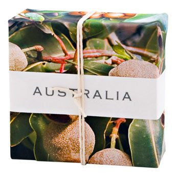 Australian Made Gifts & Souvenirs with the Australian Gumnuts Wrapped Soap -by Essense. For the best Australian online shopping for a Accessories