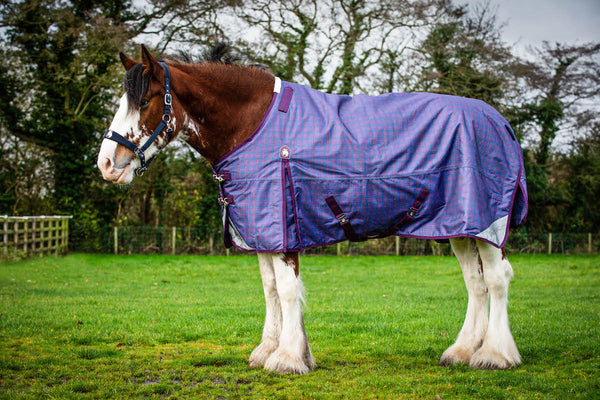 Epic® Classic 100g Turnout Rug - Broad Fit