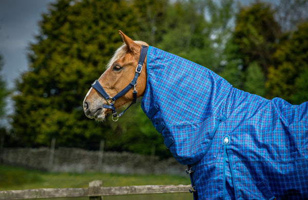 Epic® Classic 50g Combo Turnout Rug  -  Broad Fit