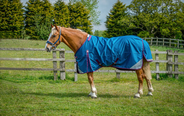 Epic® Classic 50g Turnout Rug