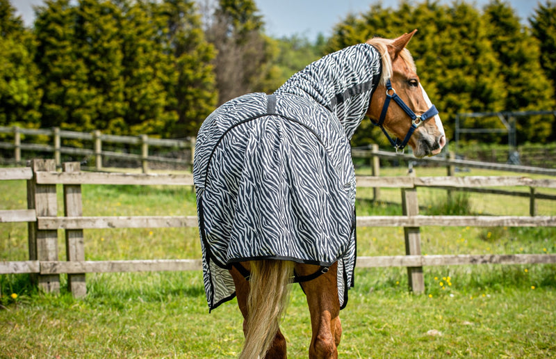 Epic® Classic Zebra Fly Sheet - Broad Fit