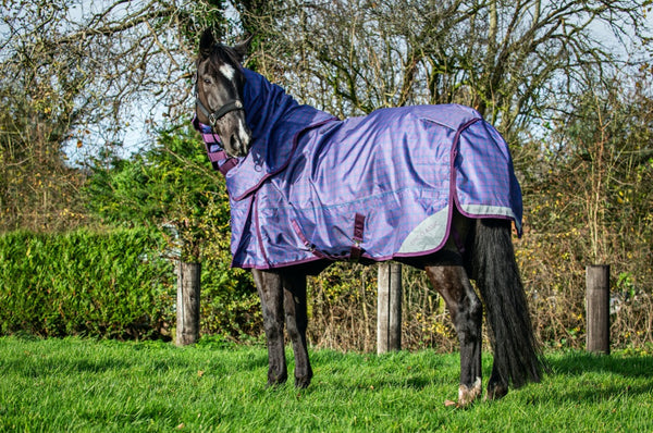 Epic® Classic 100g Turnout Rug - Regular Fit