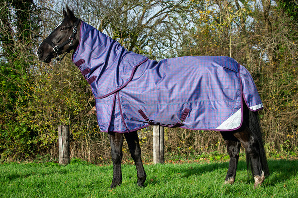 Epic® Classic 100g Turnout Hood - Regular Fit